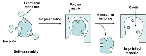 molecular_imprinting