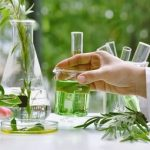 35,000+HRA Salary, CCRH Recruitment 2021:Walk-in Interview For New Senior Research Fellow (Homoeopathy) Vacancy in Patna  Apply Now!!