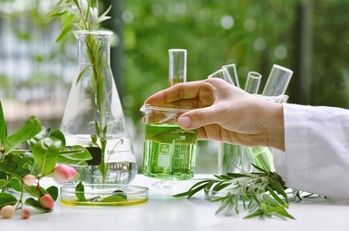 You are currently viewing 35,000+HRA Salary, CCRH Recruitment 2021:Walk-in Interview For New Senior Research Fellow (Homoeopathy) Vacancy in Patna  Apply Now!!
